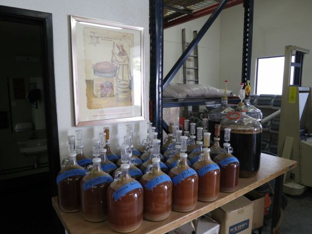 Helms Brewing Company Homebrew Class