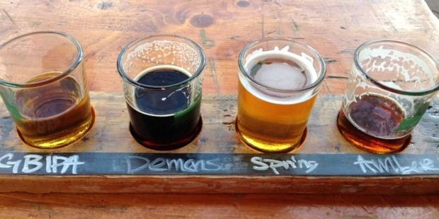 Green Bench Brewing Company Taster Glasses