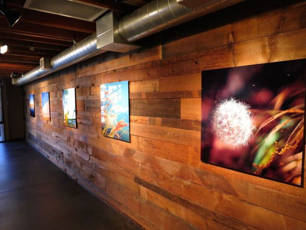 Benchmark Brewing Co Wall Photography