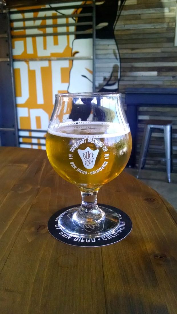 Duck Foot Brewing Company Beer Glass